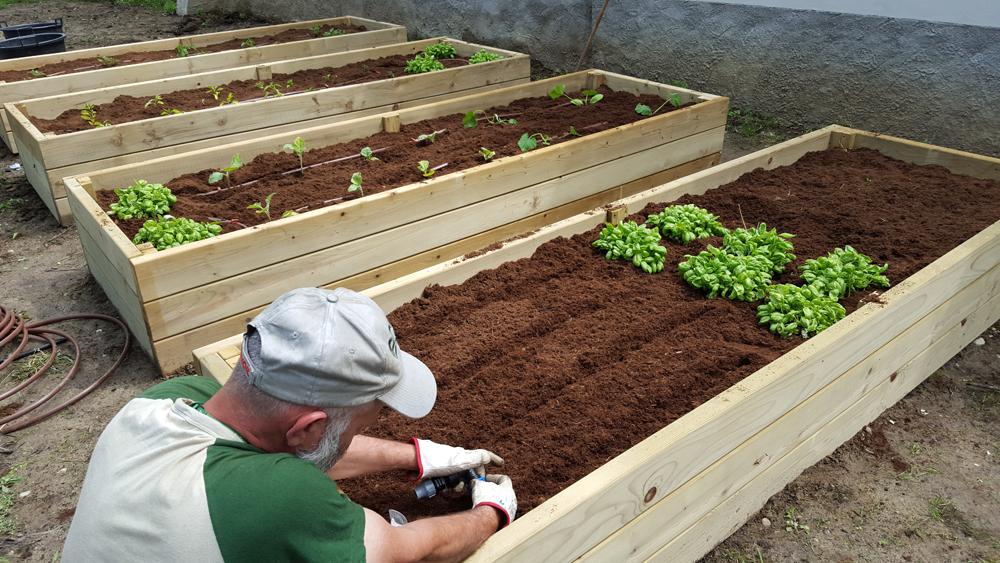 L orto si trasferisce in azienda frutta e verdura sul for Cassoni per orto rialzato